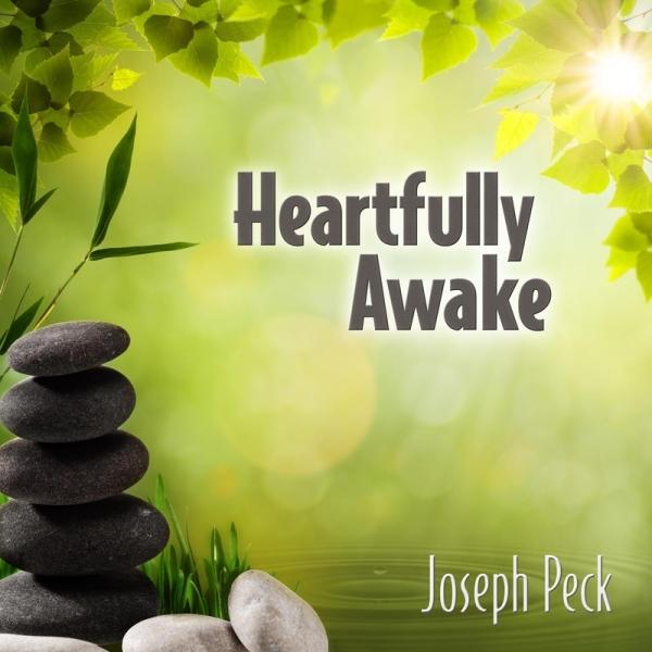 Heartfully Awkae Album Cover